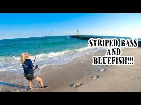 Striped Bass - Bluefish - Long Island Surf Fishing - 2020