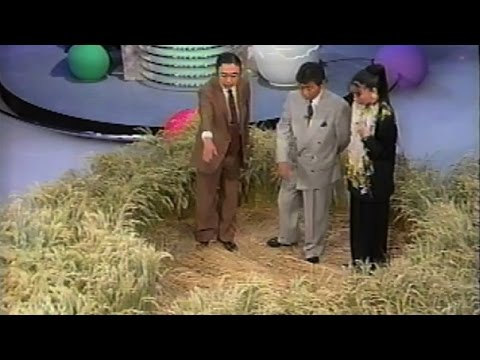 Crop Circles UK 1991 Japanese TV Special