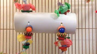 Diy: Bird Play Tunnel