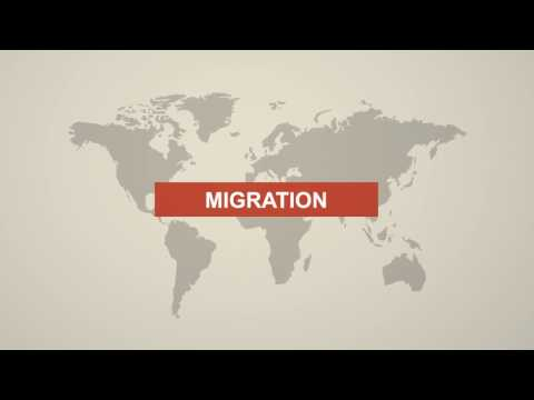 All about Migration in Switzerland | Zurich Hub