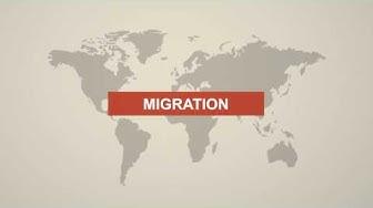 All about Migration in Switzerland | Zurich Hub