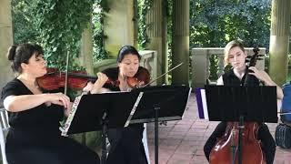 String Trio performing Handel's Queen of Sheba