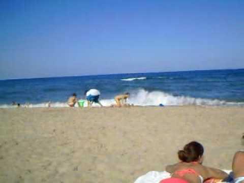 Sea monster sighting - YouTube