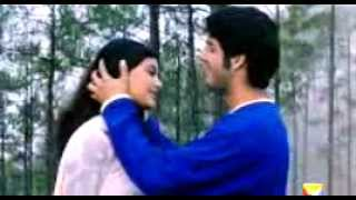 mai chahta hu tujhko dilo jaan full song.mp4