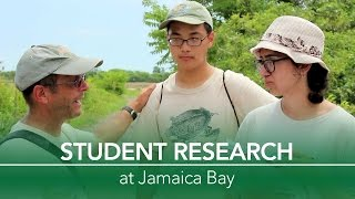 Student Research at Jamaica Bay