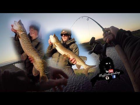 Episode 183 - Successful Short Pike Trips - Nuffinbutfishing