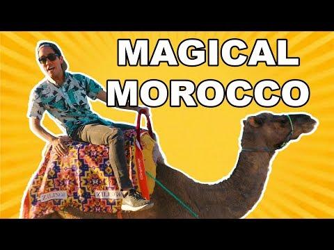 Magic Tricks for Travel | Zach King