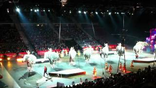 Zing Zang Zoom - Ringling Bros. and Barnum & Bailey Circus