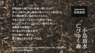 2010-12-09の作曲&録音「小島烏水 亡びゆく森」