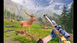 Wild Deer Hunting Adventure Part-1 | Animal Shooting Android GamePlay | By Game Crazy screenshot 4