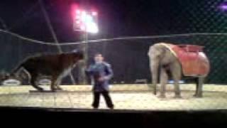 Cirkus Berolina Berlin 2010