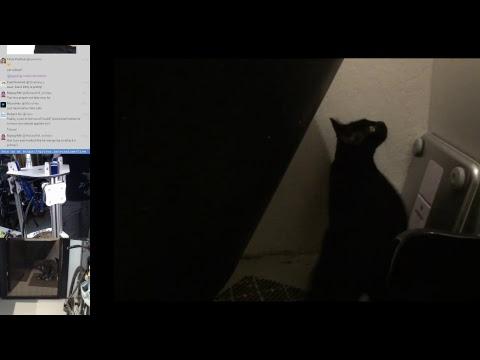 Multi-cat, donation unboxing, block printing, bot healing @scanlime-in-progress