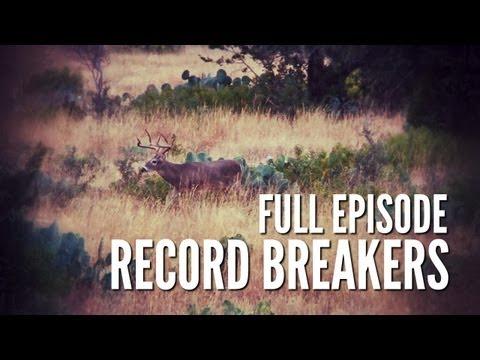 Deer Nutrition PLUS Hog Hunting | Record Breakers