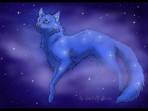 Коты воители -Синяя Звезда(Заказ с канала- огнхвостка кв)