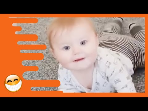 Adorable Babies Playing With Cats  -  Cute Baby Videos