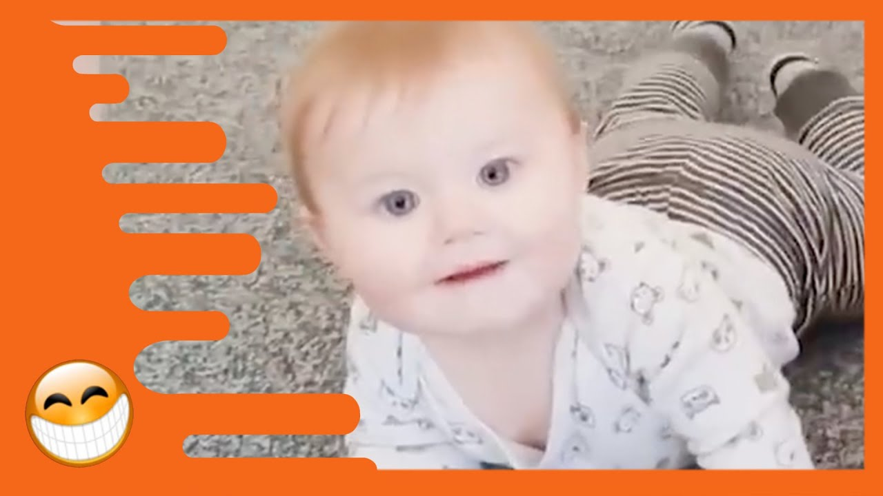 Adorable Babies Playing With Cats Cute Baby Videos