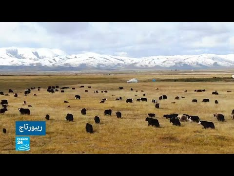 هل تسعى الصين لفرض نمطها -الحداثي- على سكان إقليم التبت؟  - نشر قبل 30 دقيقة