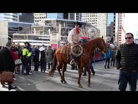 The Stock Show Parade In Downtown Denver, Colorado