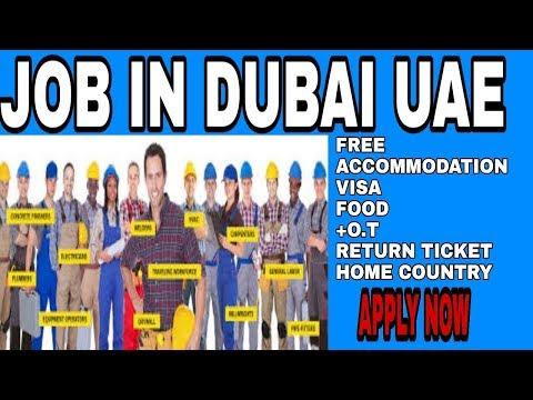 Job in Dubai   factory workers   General workers   helpers   job in UAE   all categories