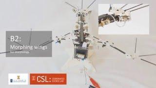 B2 (3D-Printed Bat Robot) Closed-Loop Flight Control Update (2016 IEEE ICRA)