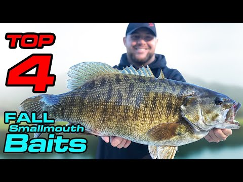 TOP 4 Best Baits For GIANT Fall Smallmouth | Fishing Tips-Piscifun