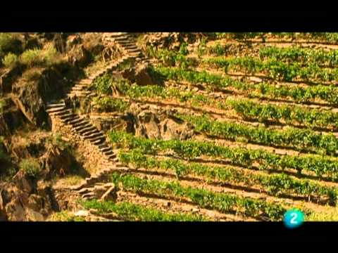 Ourense, Aguas y Termas