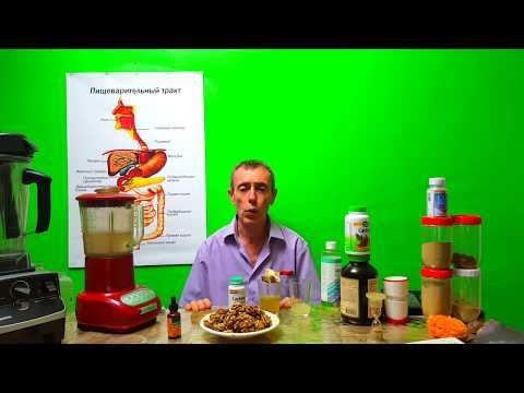 Береза – лечебные свойства и рецепты применения березы