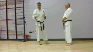 Sochin Bunkai Strategies 2016 week 48 koryu karate oyo jutsu