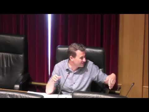 Pleno en la Diputación 29 5 20