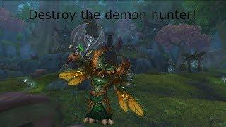 Destroy the demon hunter! - Feral druid pvp 8.2
