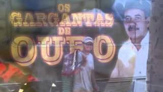 GARGANTAS DE OURO GABIROBA E TEM DO PEQUENININHA.
