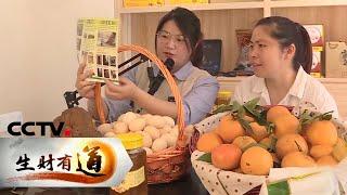 《生财有道》 20200528 江西寻乌:鸡蛋里的财富故事| CCTV财经