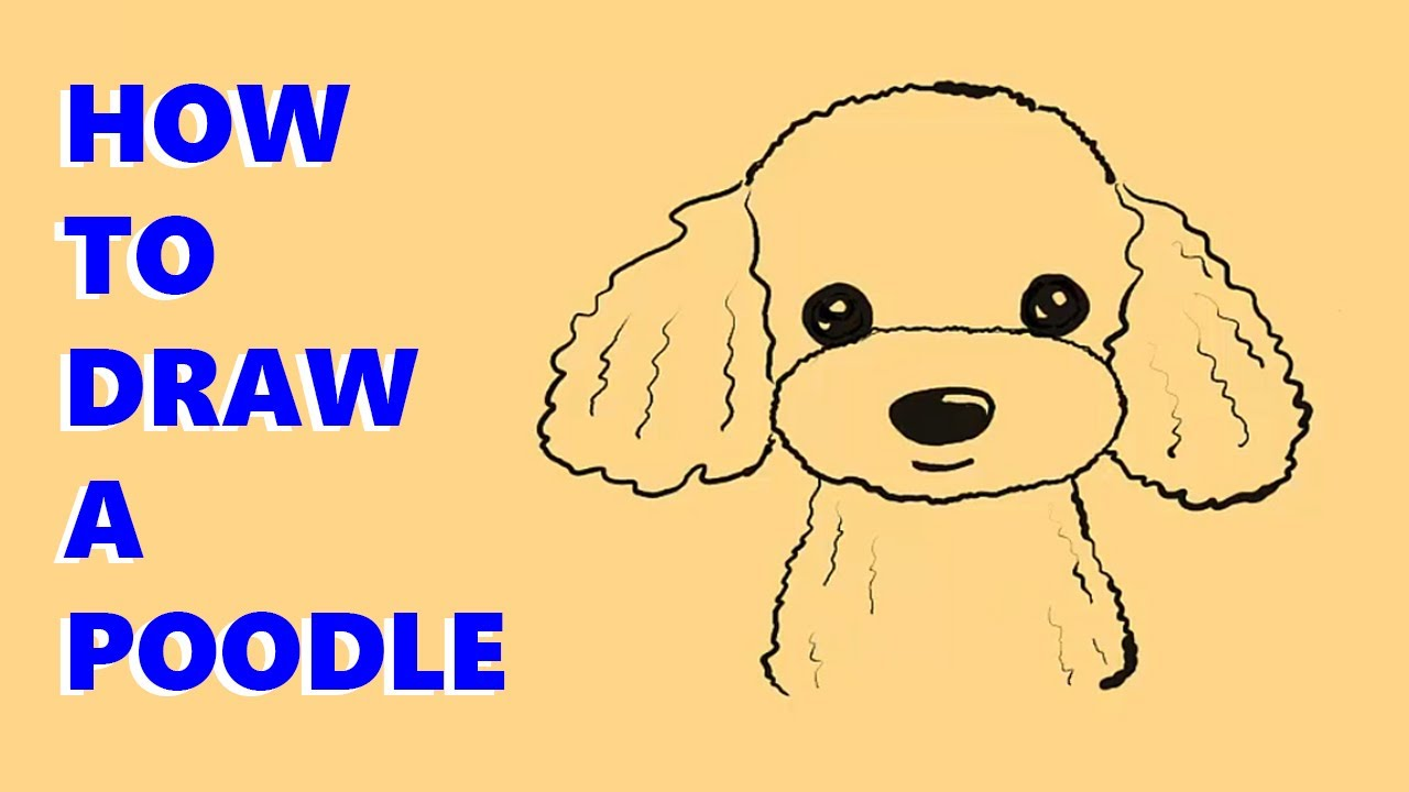 How To Draw A Poodle Puppy For Kids