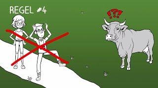 Überlebens-Tipps für Wanderer: Falls Sie eine Kuh angreift - So verhalten Sie sich richtig