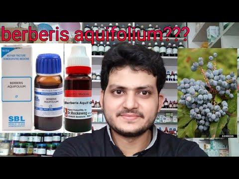 hqdefault - Berberis Aquifolium Q For Acne