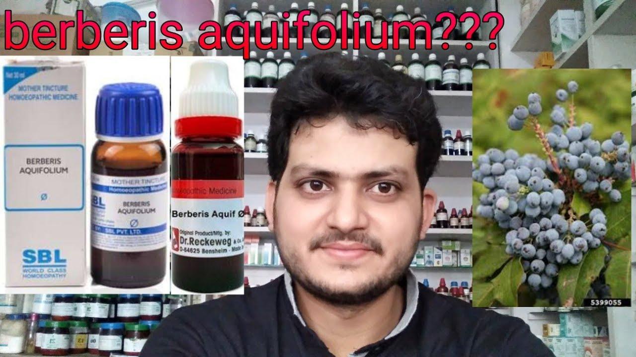Berberis aquifolium!Homeopathic medicine for acne pimples pigmentation  fairness????