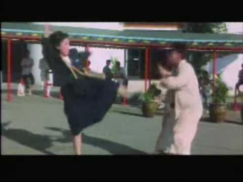 Download License To Steal - Yuen Biao vs. Kung Fu Girl