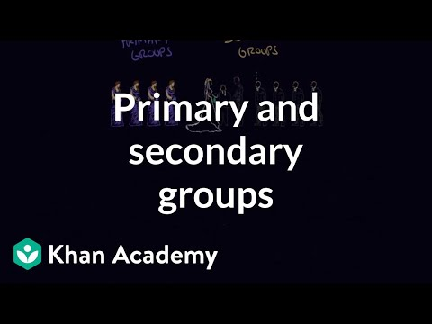 Primary and secondary groups | Individuals and Society | MCAT | Khan Academy