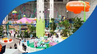 The Theme Park News Show - 1st November 2019