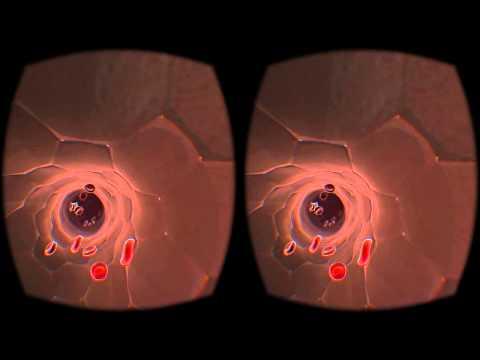 interactive VR blood cells test