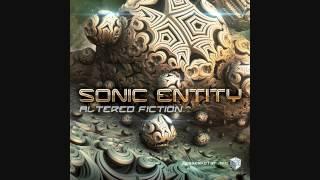 Sonic Entity - De Facto