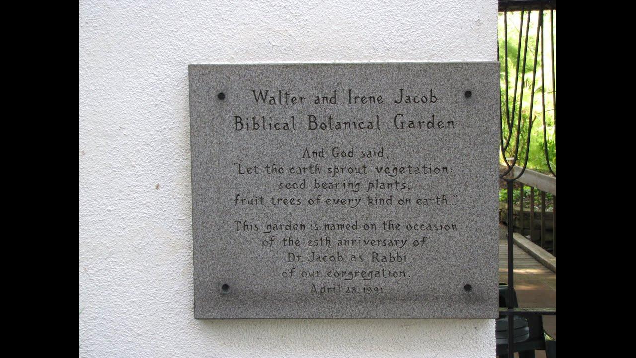 Rodef Shalom Biblical Botanical Garden Youtube