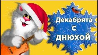 С Днем рождения в ДЕКАБРЕ! СУПЕР поздравление рожденным в декабре #Мирпоздравлений