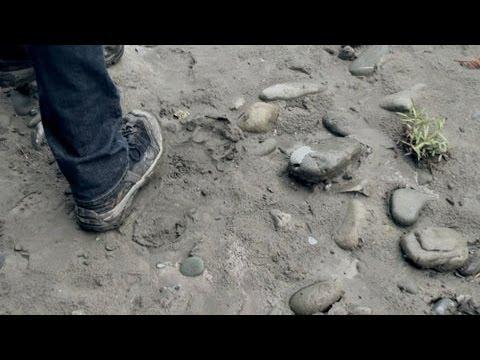 'BigFoot: The Lost Coast Tapes'