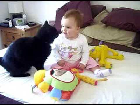 Fussy Cat and excited baby