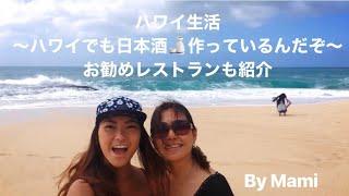 ハワイ生活 ハワイで日本酒 酒造発見