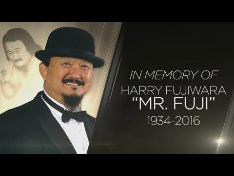 A special look at Mr. Fuji's legendary career
