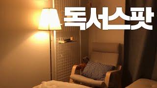 가성비甲 독서의자 추천 이케아 포엥 구매리뷰/ 미니부부