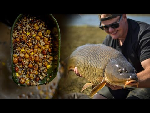 How To Use Particles In Carp Fishing