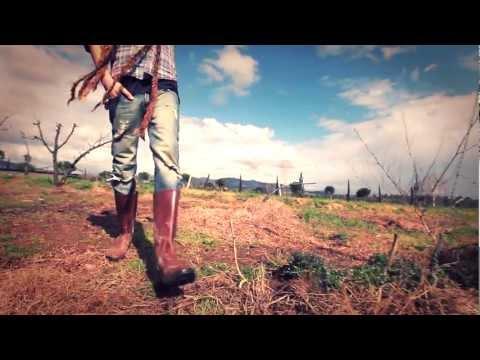 QUARTIERE COFFEE - Italian Reggae Familia - (Official videoclip HQ)